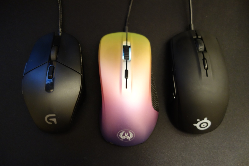 SteelSeries Rival 300 CS:GO Fade Edition Review - Mouse showdown